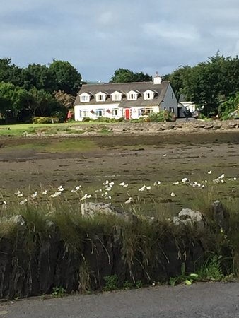 Clonmara Bed & Breakfast: From across the bay when the tide was out