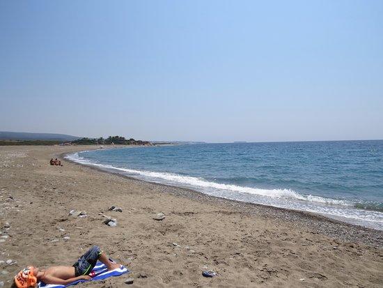 District Paphos, Cyprus: Langer, unbewirtschafter Strand - fast menschenleer.
