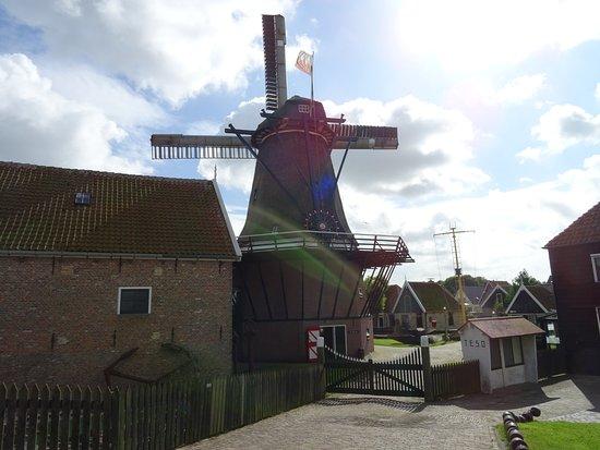 beoordelingen seks in de buurt Texel