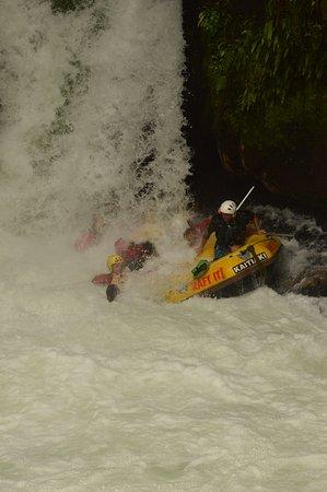 Kaituna Kayaks: Phew!! Now can we do it again??