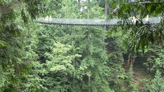 Nord-Vancouver, Canada: Capilano Suspension Bridge