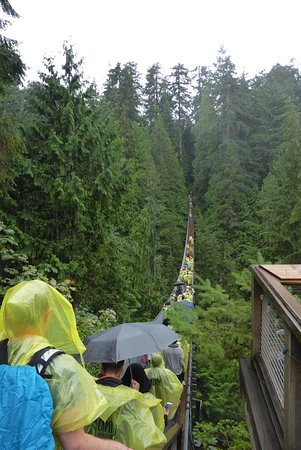 Nord-Vancouver, Canada: Capilano Suspension Bridge....any room ?