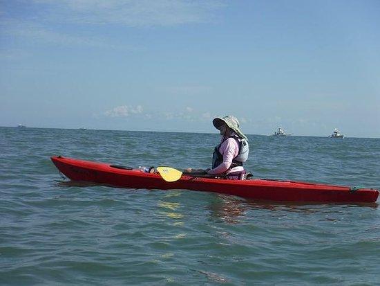 Dolphin Kayak Tour Virginia Beach
