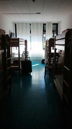 Hotel Otter: CAM03767_large.jpg