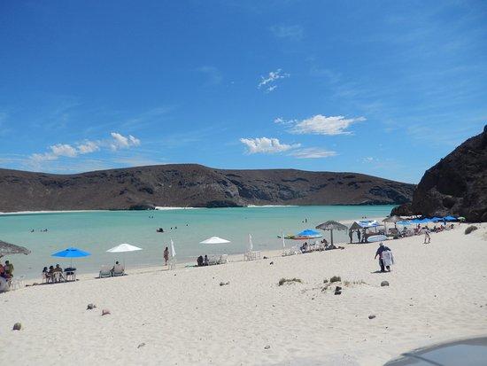 Kalifornia Dolna, Meksyk: Playa Tecolote (las sombrillas se alquilana un precio muy accesible)