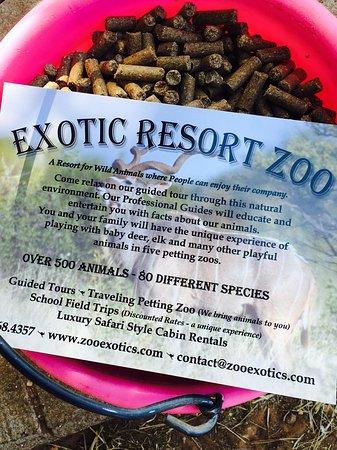 Exotic Resort Zoo Image
