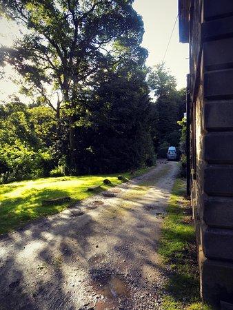 Hayfield, UK: Leafy lane