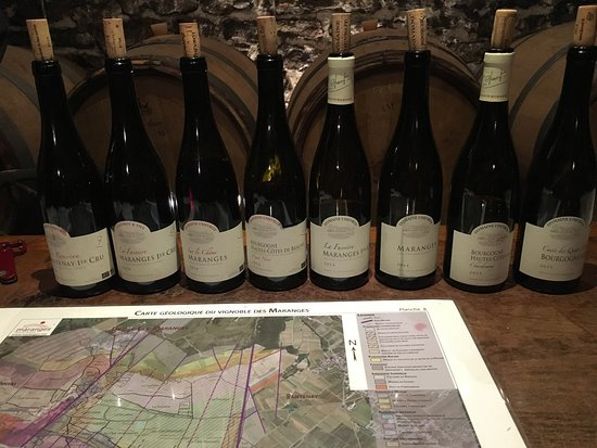 Puligny-Montrachet, Frankreich: Wagner Oenologic
