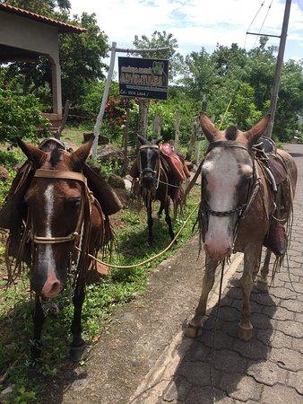 Santa Cruz, Nicaragua: photo0.jpg