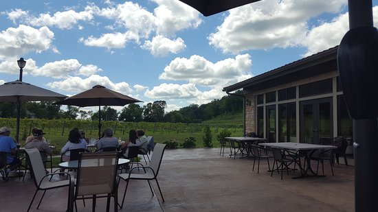 River Falls, WI: Vineyard 3