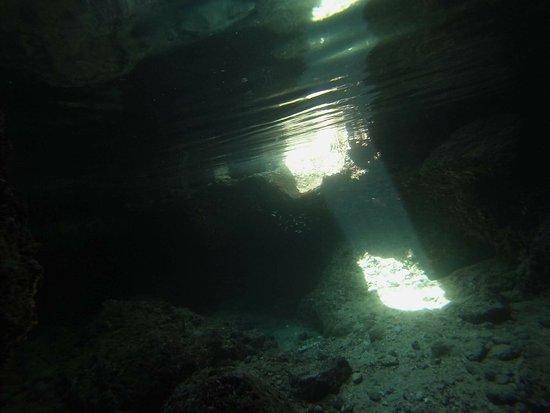 Podgora