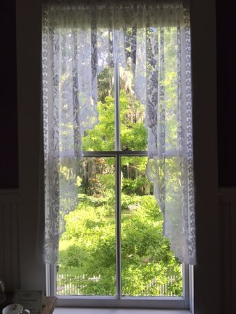 The Laurel Oak Inn: The view from my bedroom at the top of the stairs.