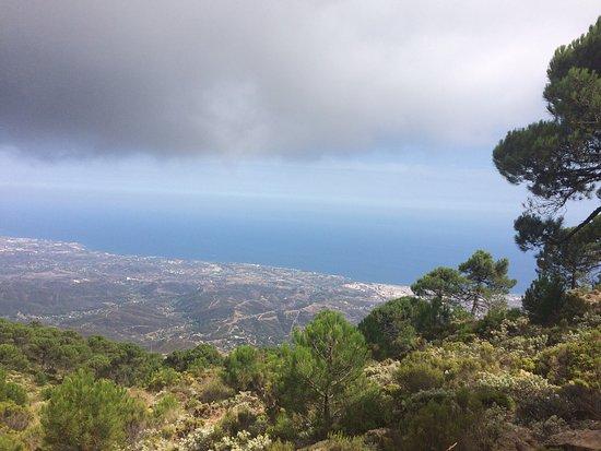 Los Reales de Sierra Bermeja: photo2.jpg