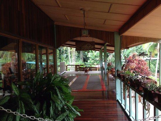 Sloth Sanctuary of Costa Rica (Aviarios del Caribe): corredor del hotel