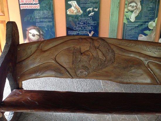 Sloth Sanctuary of Costa Rica (Aviarios del Caribe): una asiento grande