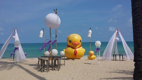 New Star Beach Resort: The beach set up for dinner on the beach