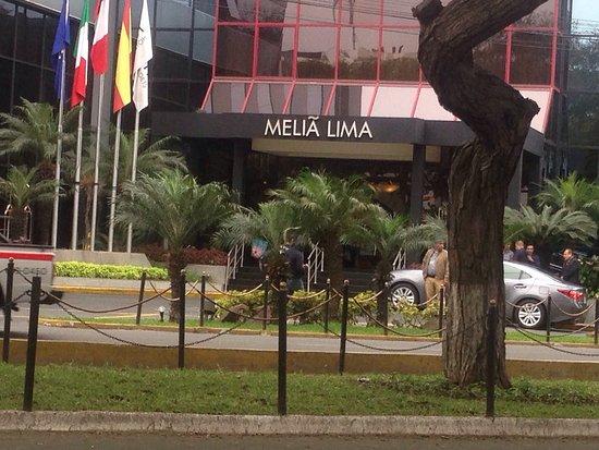 Melia Lima