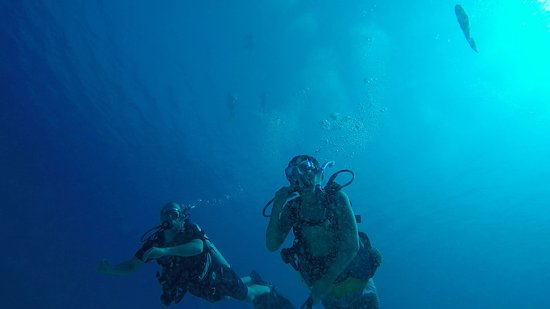 beautiful visibility and fish sightings everywhere - snorkelers had a great time too