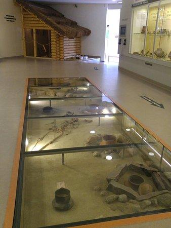Museum in Koszalin: 20160810_141033_large.jpg