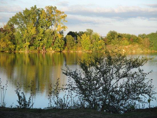 Fidler Pond Park