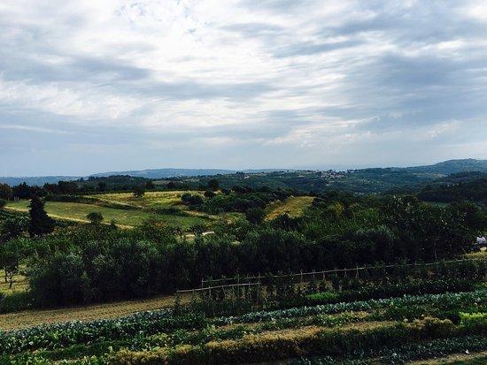 Agroturizam San Mauro : photo1.jpg
