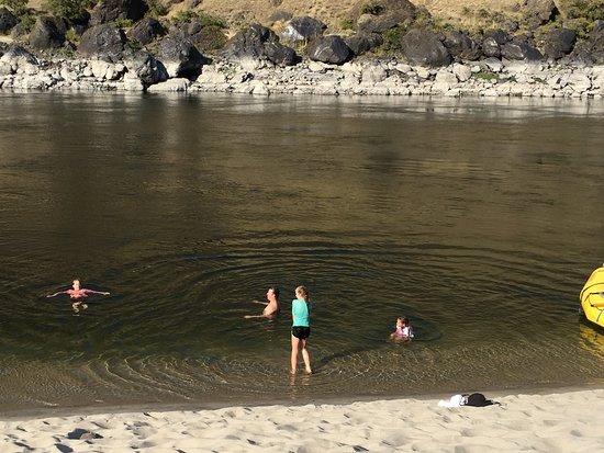 Angels Camp, كاليفورنيا: It reached 100 degrees. The river felt good