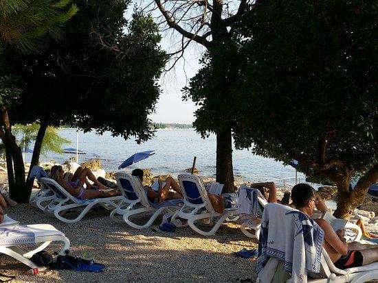 Villa Rosetta Hotel: La spiaggia