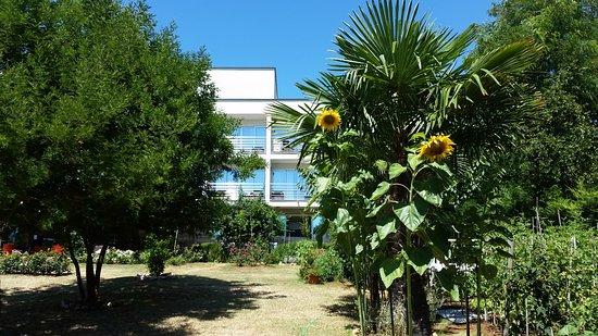 Villa Rosetta Hotel: Il giardino