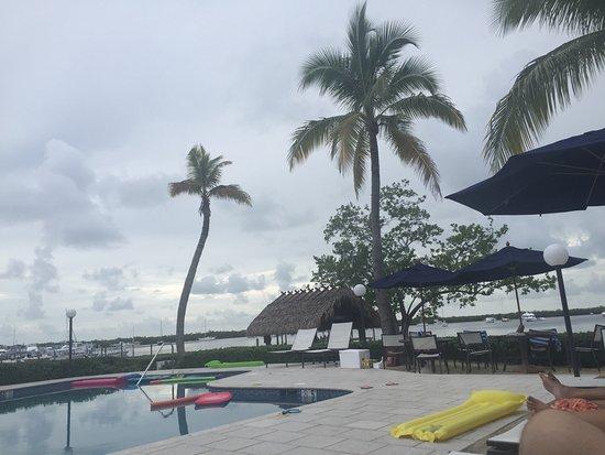 椰子棕櫚酒店張圖片