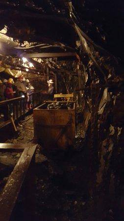 Aj Mine Tour Juneau