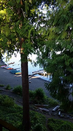 Quinault, WA: View from 3rd Floor Lakeside Room