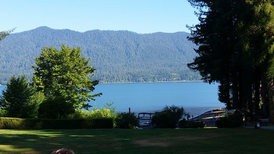 Quinault, WA: Lake view from lawn