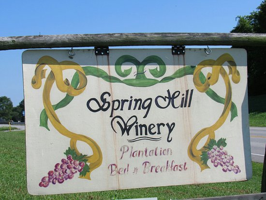 Springhill Winery & Plantation Bed 'n Breakfast Image