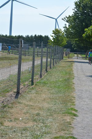 Ridgetown, Canadá: Fences and walkway