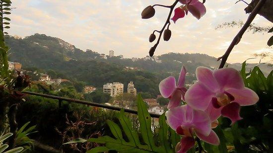 Casa Caminho do Corcovado: Early morning view