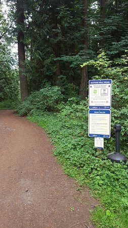 8abd3288eb1 Duthie Hill Park (Issaquah) - 2019 All You Need to Know Before You ...