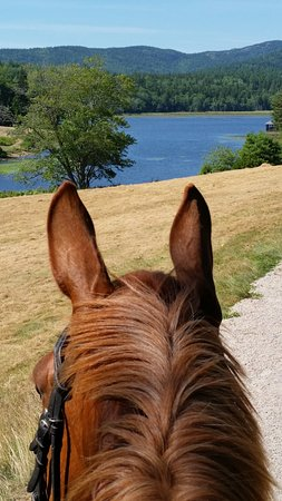 Otter Creek Inn is the perfect place to stay when exploring the park on horseback!