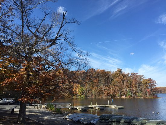 Things To Do in Lake Accotink Park, Restaurants in Lake Accotink Park