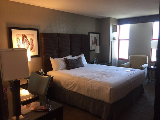 Camera standard con letto queen size picture of doubletree by