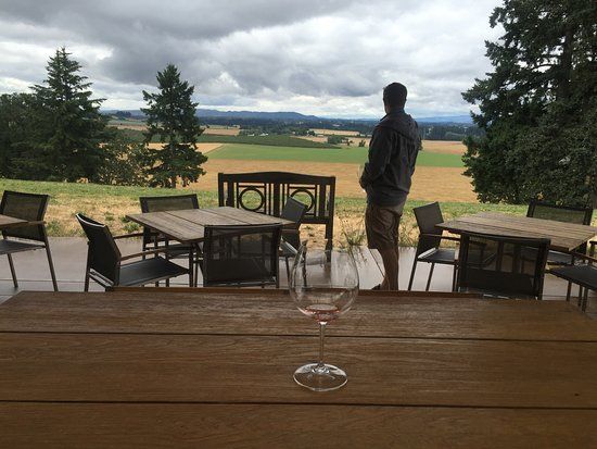 Carlton, OR: Enjoying the view