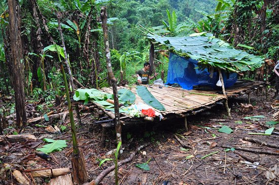 Luang Namtha, Laos: Nice hut where to really experience the jungle
