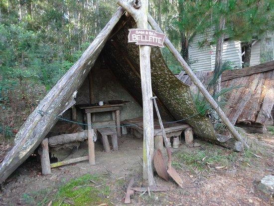 A Hut Picture Of The Original Gold Rush Colony Mogo Mogo