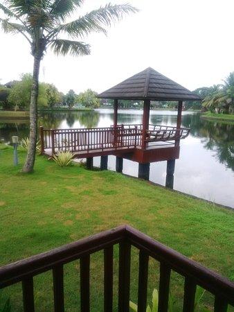 The Zuri Kumarakom: View from Cottage