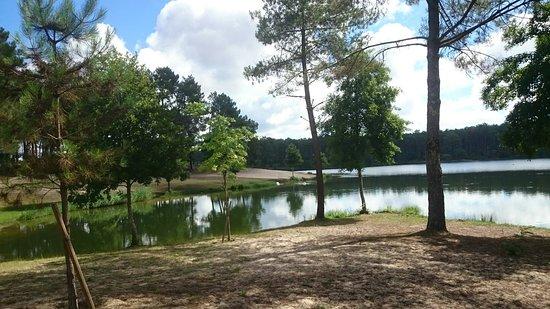 Lac de clarens casteljaloux 2020 ce qu 39 il faut savoir - Office tourisme casteljaloux ...