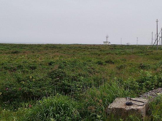 Betsukai-cho, Ιαπωνία: 湿地帯のなかにあるように見える灯台