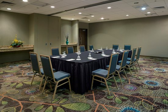 Holiday Inn Ann Arbor / University of Michigan: Conference Room