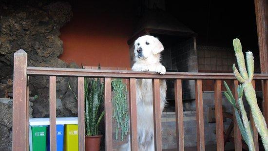 San Andres, Spanien: Que bien estoy