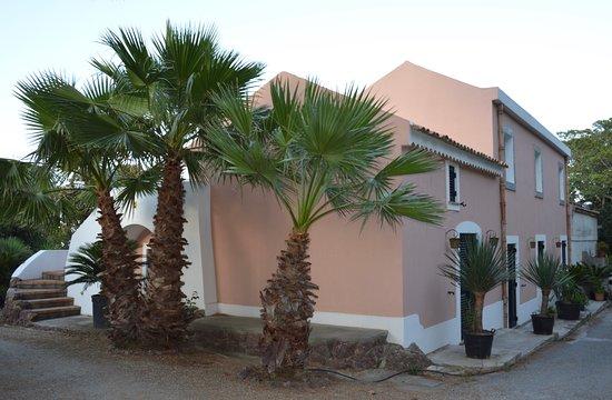 Le Palme Garden: Casa Draco