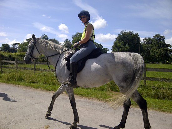 Tally Ho Stables: Walking in the Park