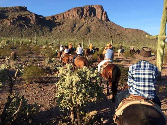 White Stallion Ranch: photo9.jpg